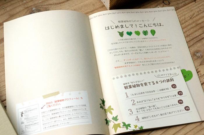book2_2.jpg
