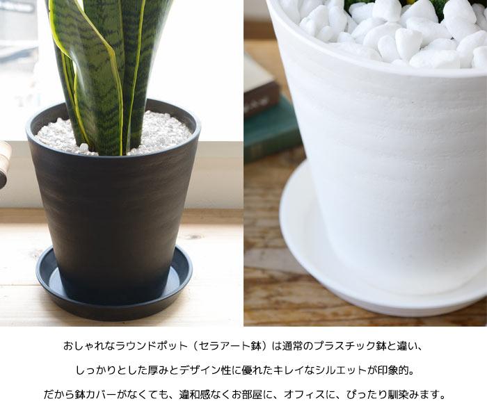 セラアート鉢