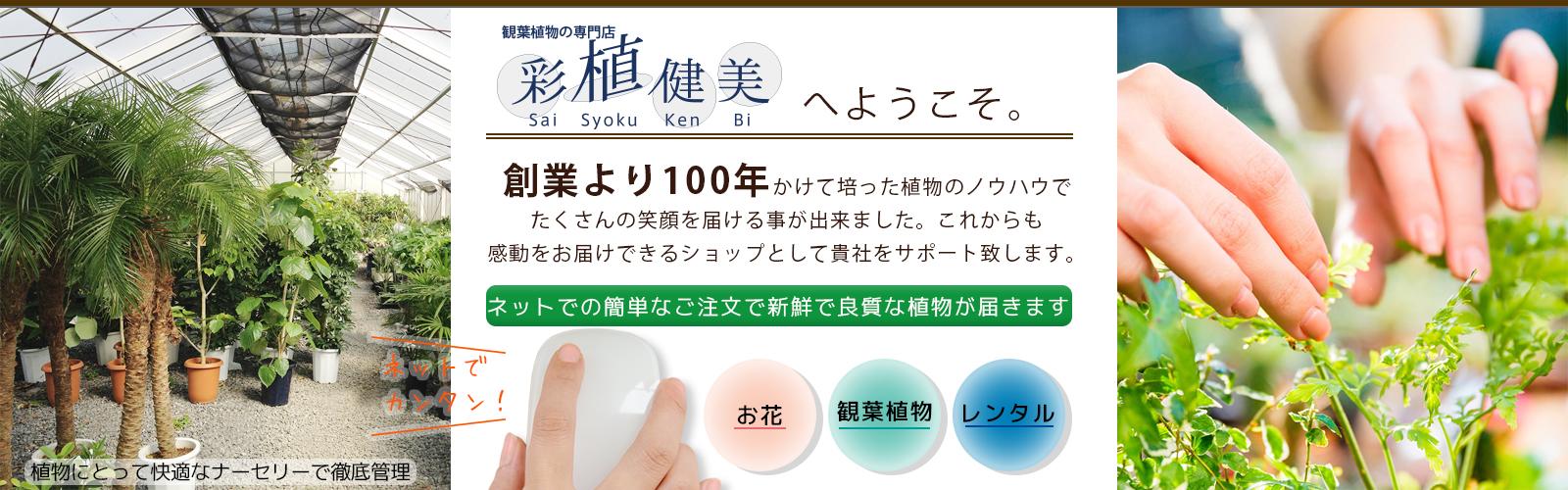 top_03_01.jpg
