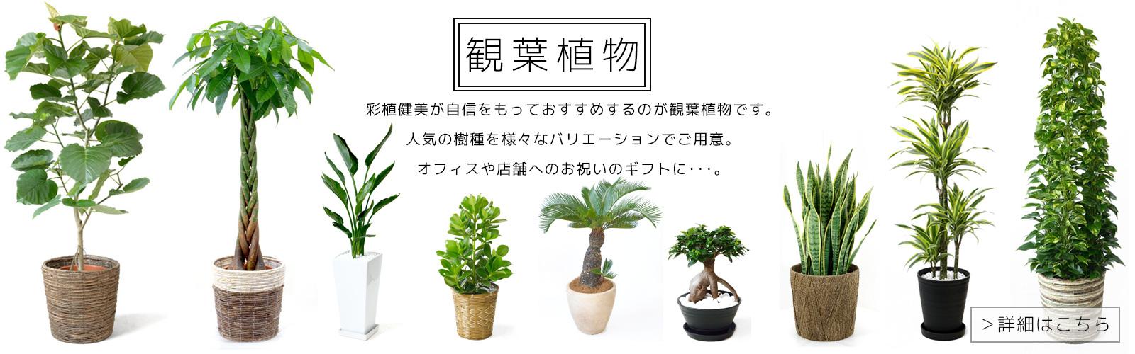 top_03_02.jpg