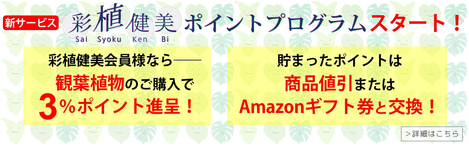 /top_03_08.jpg