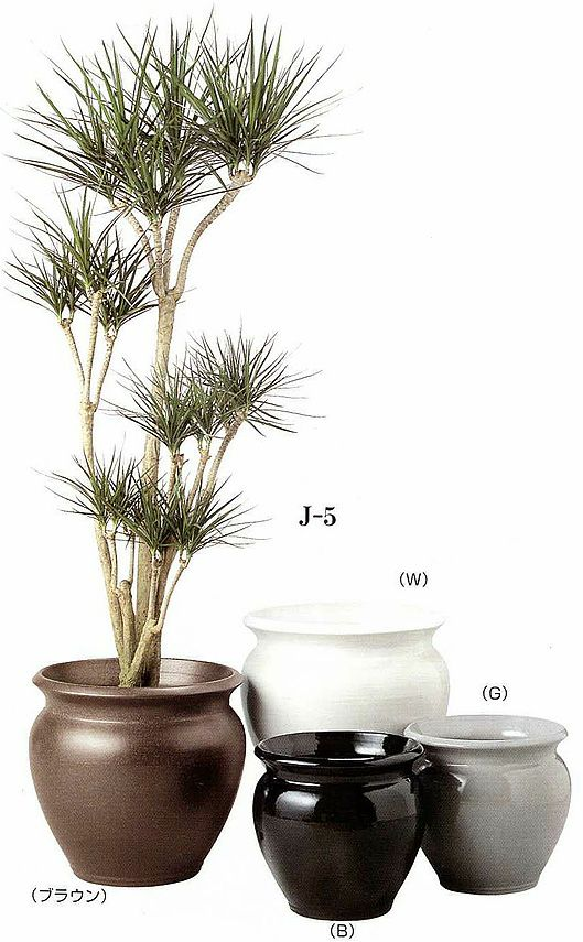 観葉植物用資材 通販 陶器 鉢カバー ジュネスJ-5 10号鉢用 KB200002